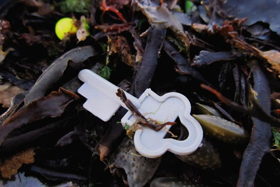 beach_plastic_key04